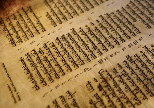 Bibbia: studente trova frammento del testo piu' antico