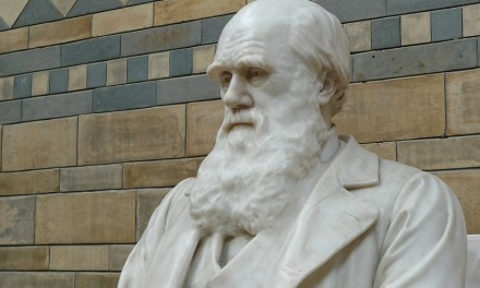 Creazione o Evoluzione?