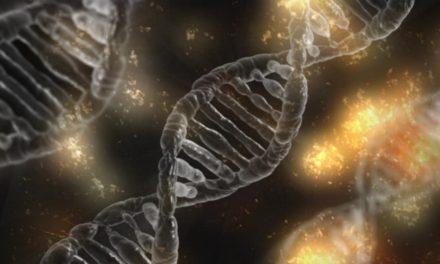 Unità genetica: L'etica di distruggere una specie per salvare vite umane